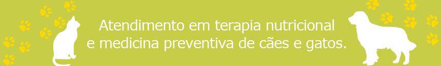 banner-2_blog_860x130