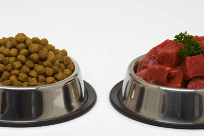 Dog Food and Chopped Beef in Dog Bowls
